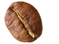 https://minges-kaffee.de/wp-content/uploads/2018/11/Kaffeekunde-Bohne-Robusta.png